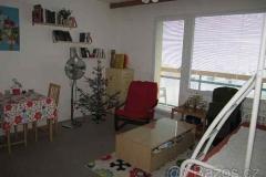 Vánoční stromek do inzerce rozhodně nepatří